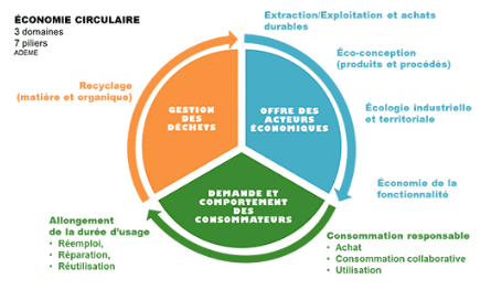 schema economie circulaire de l'ademe