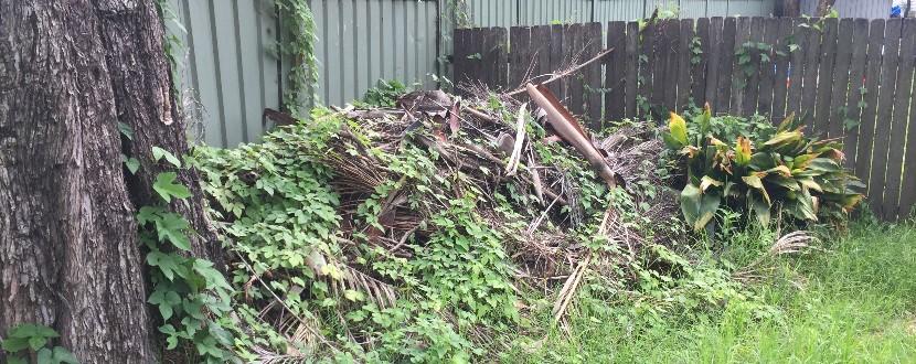 Évacuation déchets verts bennes